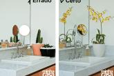 Certo e errado:plantas dentro de casa